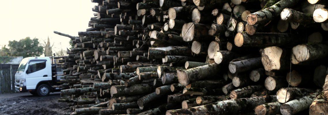 log-holder-company-firewood
