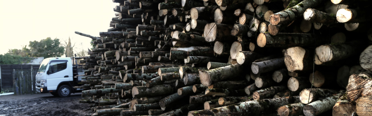 log-holder-company-firewood_2224_Enhance---1280x400